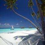 Luxury Eco Resort