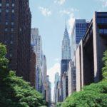 VEGANuary in New York City